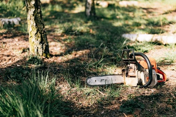 prazos de limpeza de terrenos